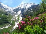 Les Dômes de Miage et ce qui reste du glacier de Miage